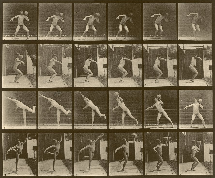 Eadweard Muybridge, Animal Locomotion, plate 315, depicting George Brinton, c. 1887