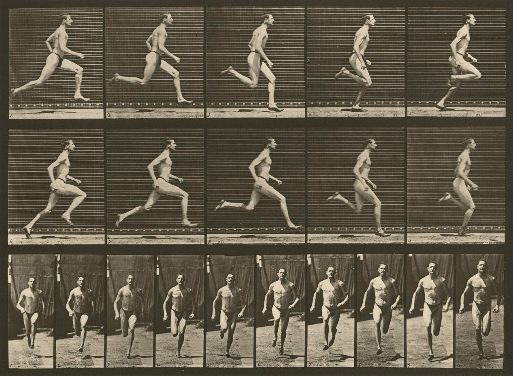 Eadweard Muybridge's Animal Locomotion, plate 60, c. 1887