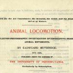 Muybridge's Animal Locomotion announcement, cover, 1887