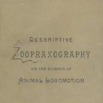 Muybridge's Animal Locomotion, Descriptive Zoopraxography, cover, 1893